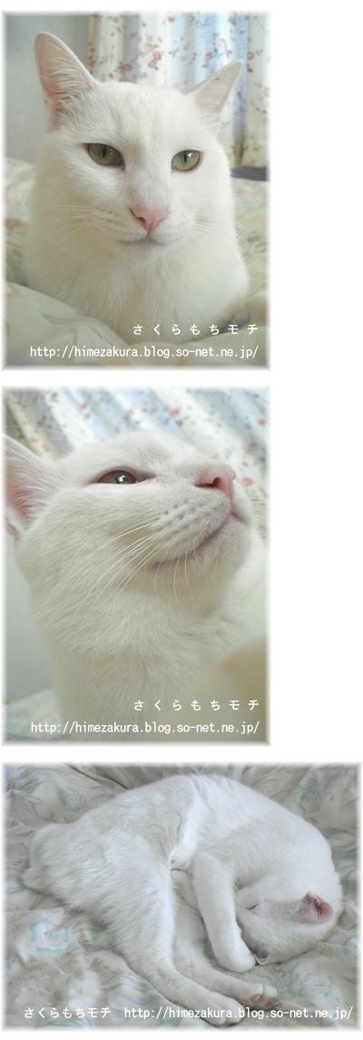 04nobita.jpg