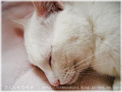 04nobita_top.jpg