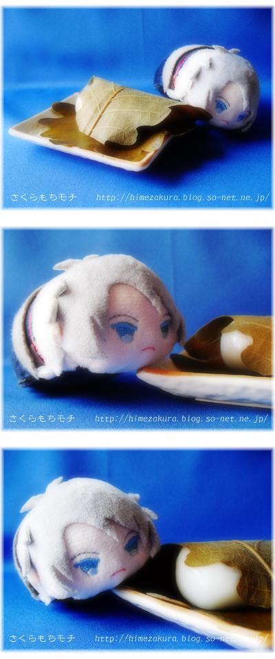 06mochi_kashiwa.jpg