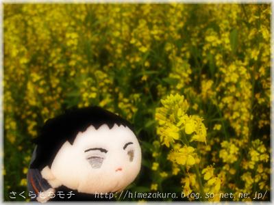 12atsu_top.jpg