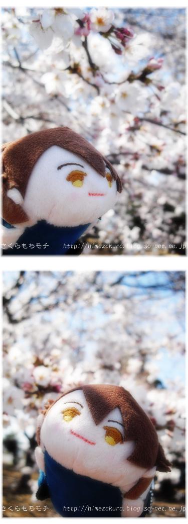 20mochi_ryu.jpg