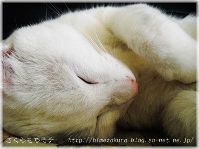 21nobita_top.jpg
