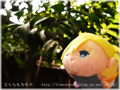28nagi_top.jpg