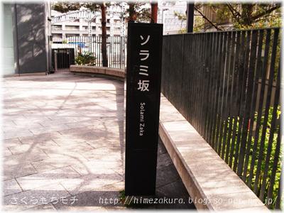 37skytree.jpg