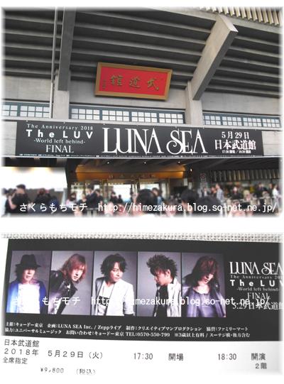lunasea1.jpg