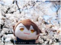 21tw_mochi_ryu.jpg